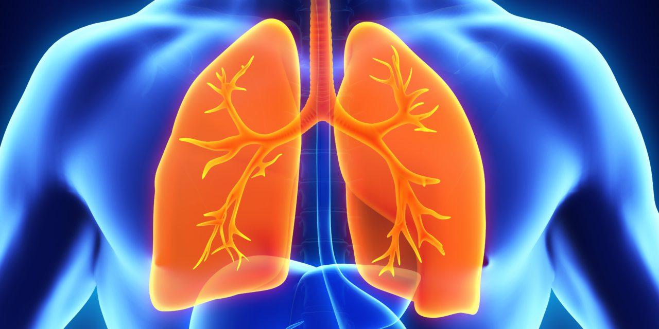 Wereld tuberculose dag